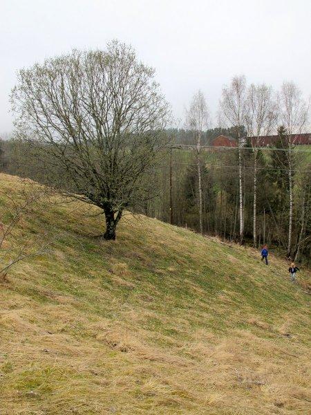 Kulturlandskap Neshagan - Grini.