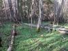 Ravine sør for By gård.
