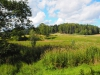 Rett ved Ekeberg gård.